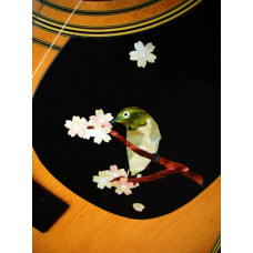 Japanese Warbler bird inlay decal - JIS-126